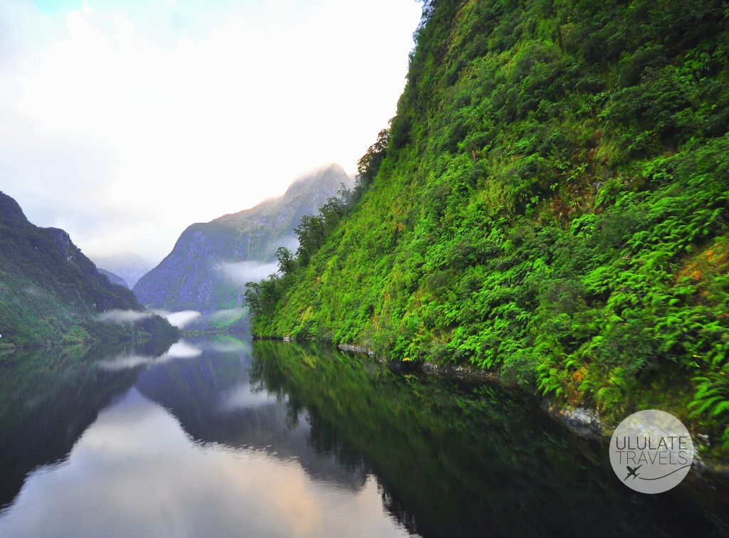 Doubtful Sound- NZ-1